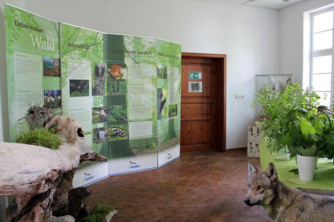 Waldausstellung in der Naturschutzstation Schwerin - Foto: Manuela Heberer